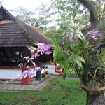 Coconut Lagoon in Kumarokom, Kerala