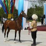 Groepsreizen Turkmenistan: Ahalteke Paarden Special
