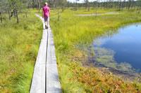 Evaluatie Rondreis Baltische Landen