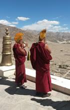Ladakh (Foto: Ellen Elvader)