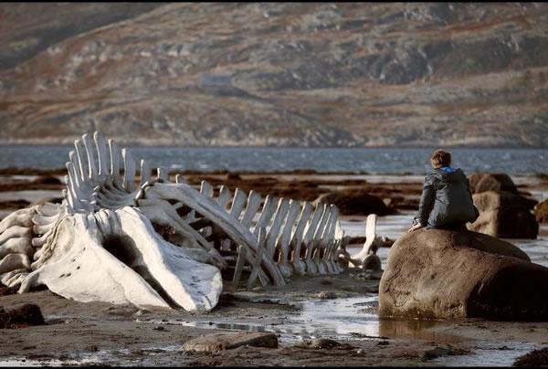 Russische cinema: Leviathan