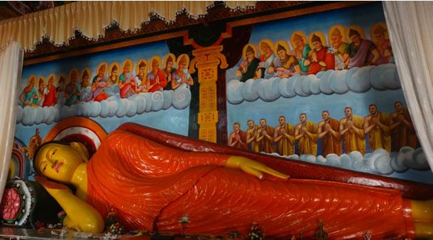 Sri Lanka (21 dagen)